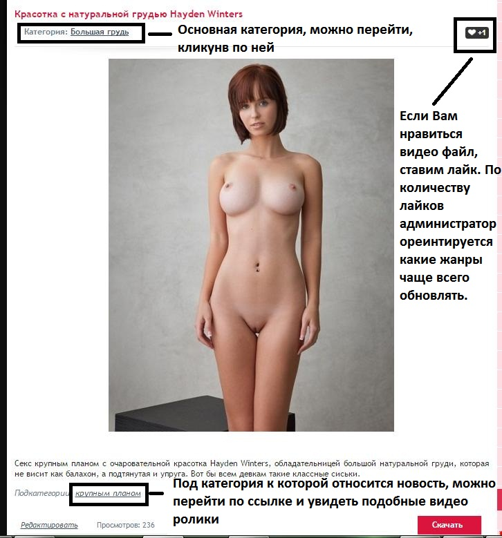 Файлообменник Порно Скачать